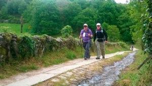 Camino spiritual journey